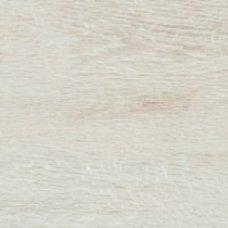 Плитка керамогранит Catalea Bianco